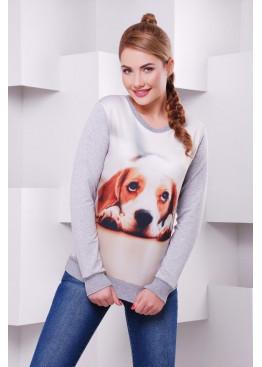 """Свитшот """"Cotton"""" с  красочной картинкой """"A little dog"""""""